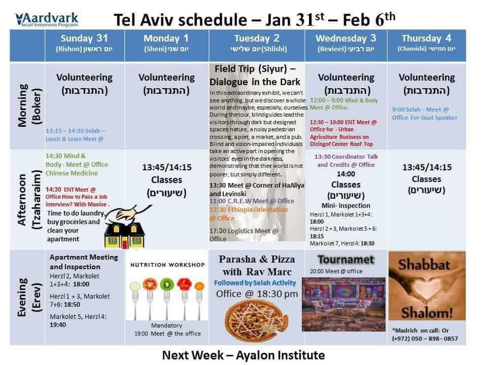 Weekly updates - tel aviv jan 31, 2016