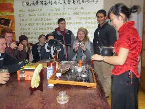 gap year program traditional Chinese tea ceremony