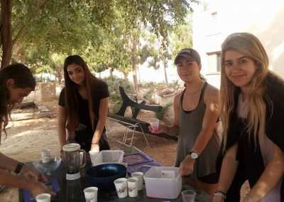 gap year in israel