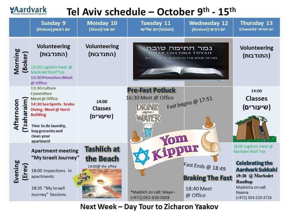 Weekly updates - tel aviv october 7, 2016