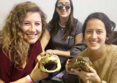 weekly updates - jeru in israel