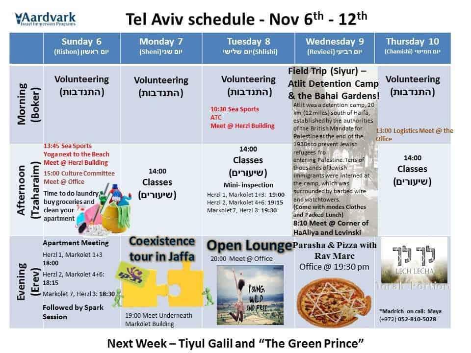 Weekly updates - tel aviv november 3, 2016