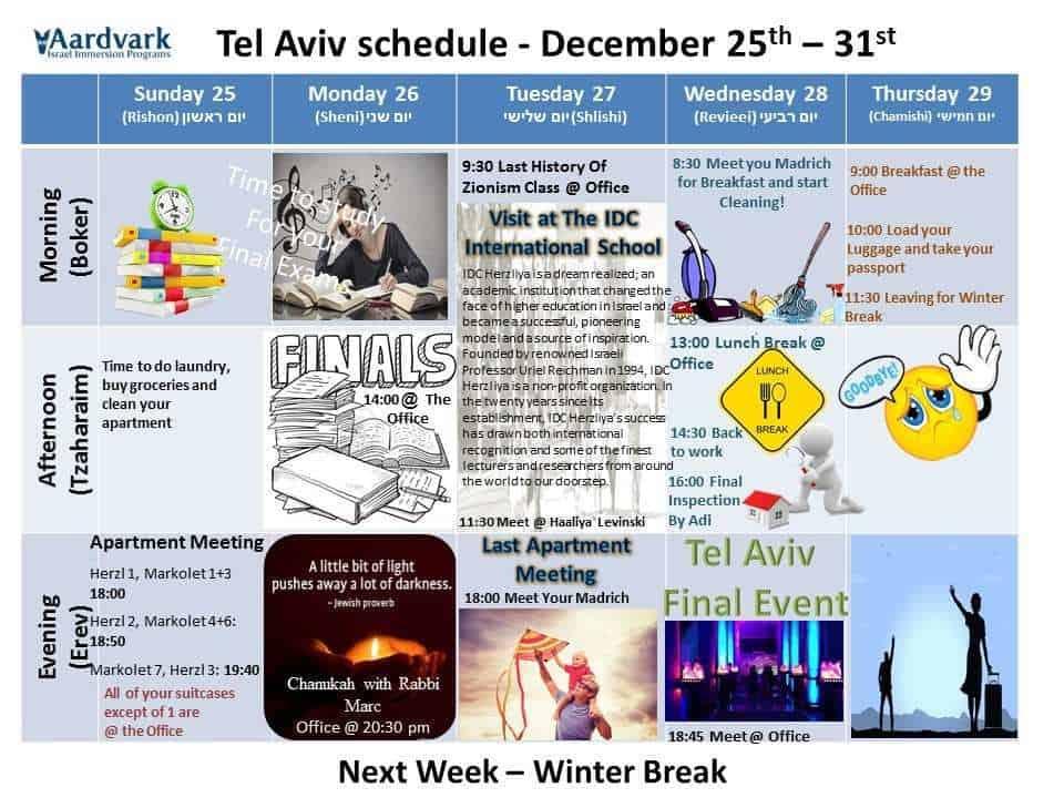 Gap year in israel - aardvarkisrael