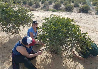 gap year program in israel tel aviv at a hike