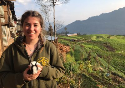 gap year in nepal split in groups