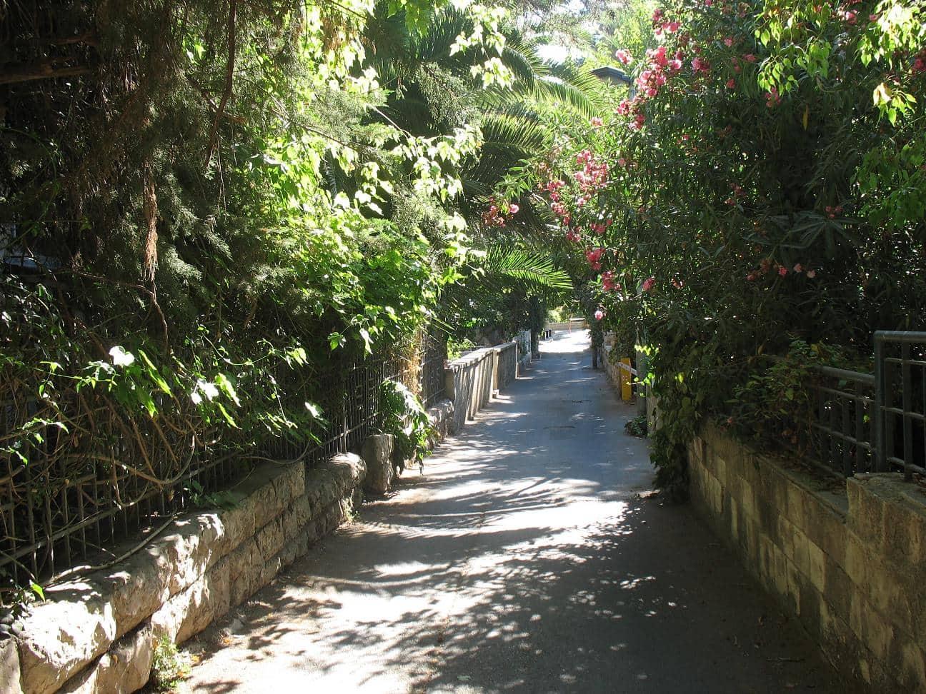 Exploring jerusalem's rehavia neighbourhood
