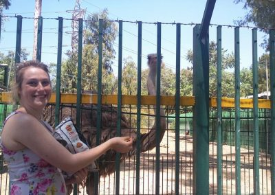 aardvark israel gap year