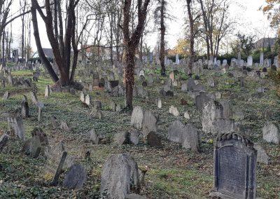 Kolin's Jewish graveyard