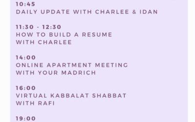 Weekly Update from Aardvark Israel