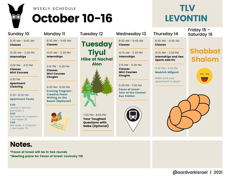 Weekly schedule- levontin